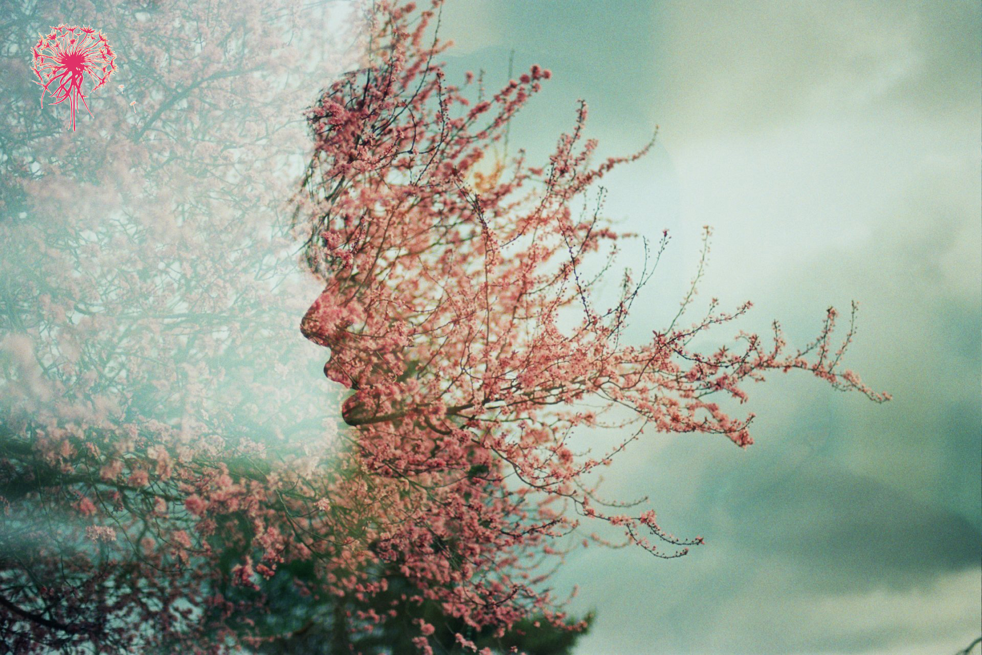 na-double-exposure-double-exposure-face-tree-flowers-spring copy